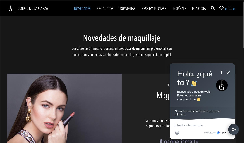Diseño web Jorge de la Garza Chat online